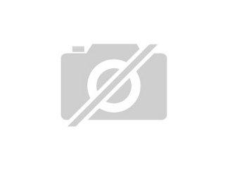 Hallo Wir haben Katzenbabys gute H?nde abzugeben Die zwei sind aus ...